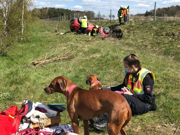 Read more about the article POL-ROW: ++ Nach Unfall auf der A1 – Hundedamen Daisy und Rosa zu Besuch bei der Autobahnpolizei ++