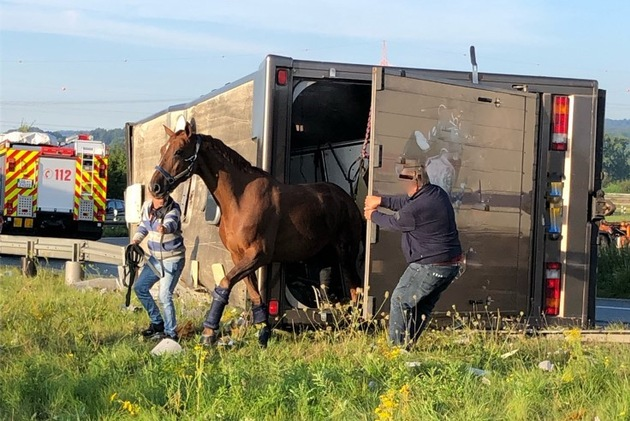 Read more about the article POL-MS: Pferdetransporter kippt im Autobahnkreuz Lotte um